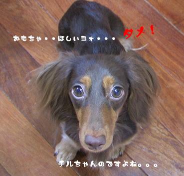 chiru_juri-05.jpg