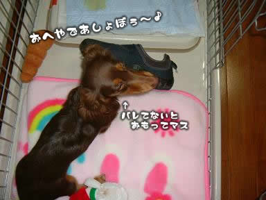 juri-itazura01.jpg