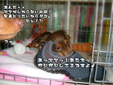 juri-itazura05.jpg