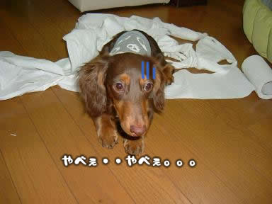 juri-itazura09.jpg