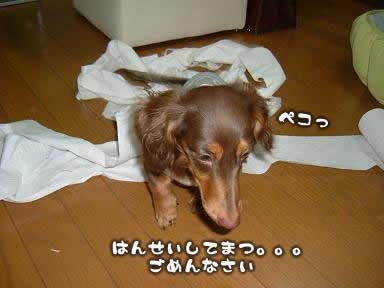 juri-itazura10.jpg