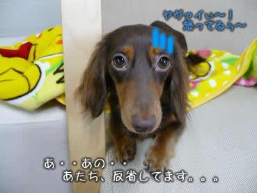juri-itazura20.jpg