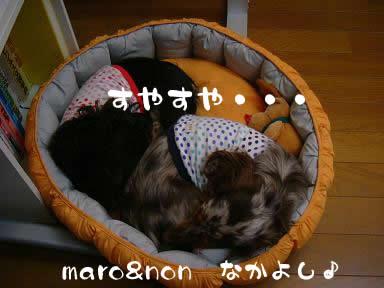 maro-non_nakayoshi_nennne03.jpg