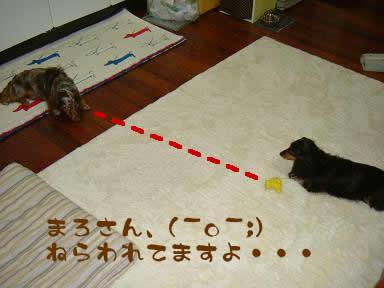 maro-non_nazumi04.jpg