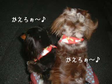 maro-non_toriming_kunkun03.jpg