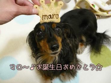 maro08bd-party_04.jpg