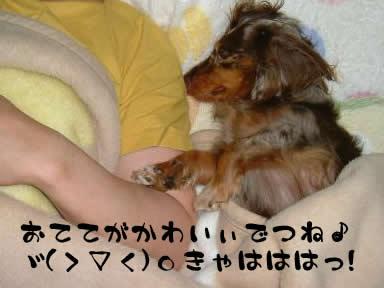 meoto03.jpg