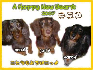 new-year3wan_07_nawo.jpg