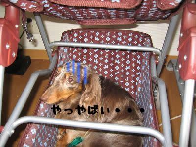 non-itazura03.jpg