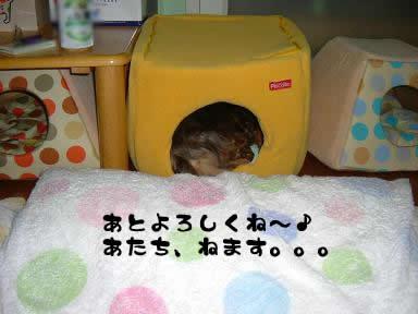 non-masato03.jpg