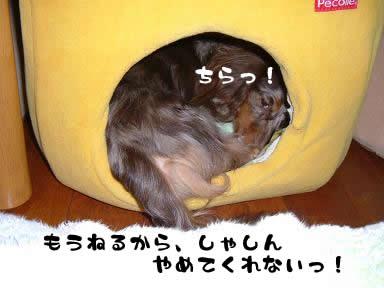 non-masato04.jpg