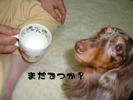 non-milk01.jpg