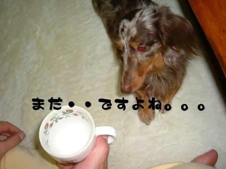 non-milk02.jpg