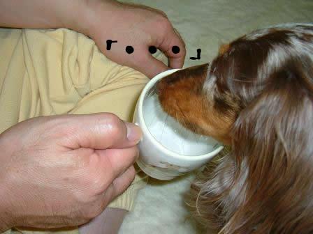 non-milk03.jpg