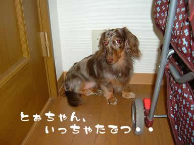 non-odemukae01.jpg