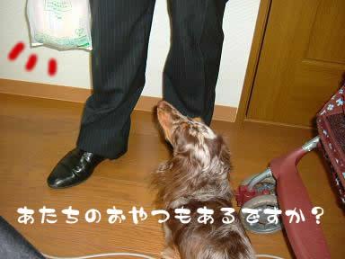 non-odemukae03.jpg