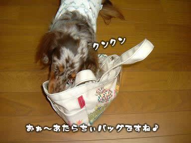 osanpo_bag-02.jpg