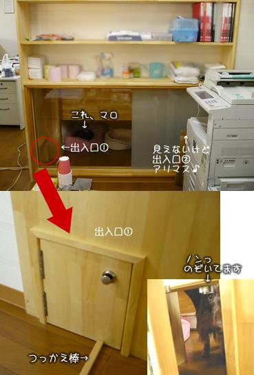 wanwan-house01.jpg