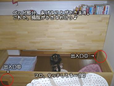 wanwan-house03.jpg