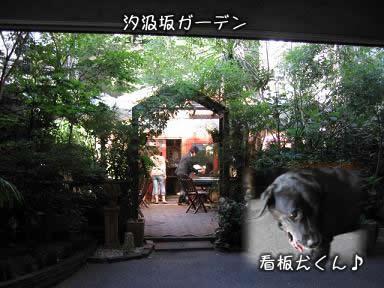 yokohama07.6.20-08.jpg