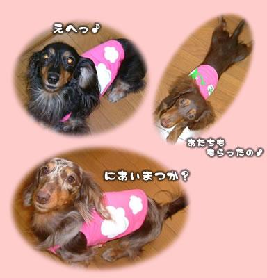 yona-maro_bd07.jpg