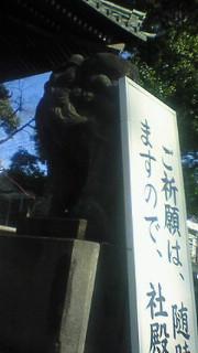 20090125125926