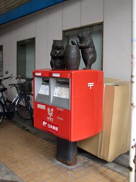 wombat4.jpg