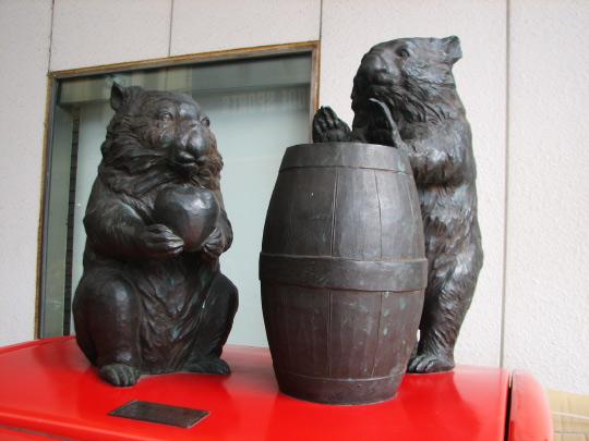 wombat5.jpg