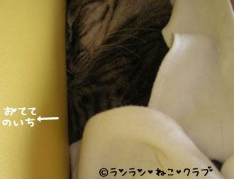 20070125gure1.jpg