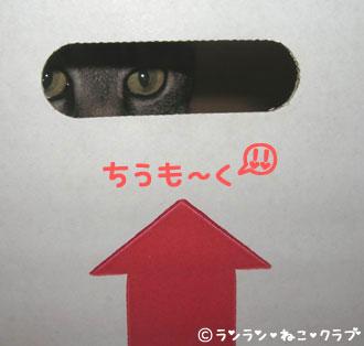 20070629gure1.jpg