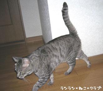 20070713gure2.jpg