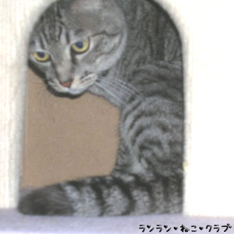 20070719gure1.jpg