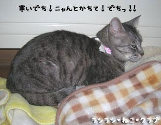 20080122gure1.jpg