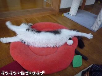 20080703guremaro5.jpg