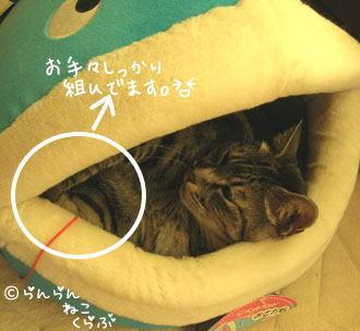 hikikomosakanagu62.jpg