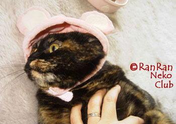 ranboushi1.jpg