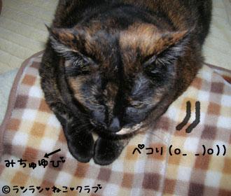ranpekori1.jpg