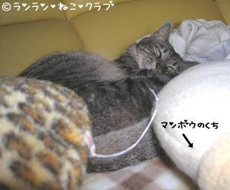 uzumoregure3.jpg