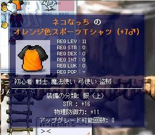 20061119124247.jpg