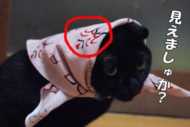 梅 歌舞伎顔見えましゅ