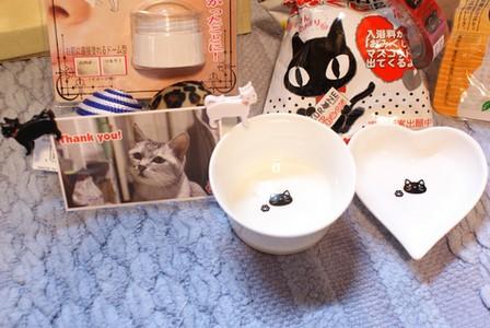 猫会 ぷ~ちゃん名刺