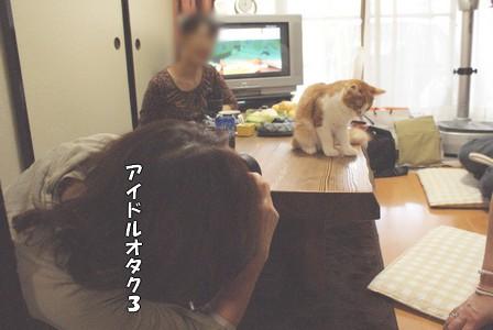 猫会 アイドルオタク3