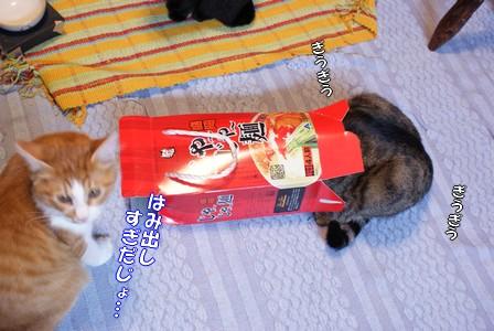 蘭 じゃ~じゃ~麺マンぎうぎう