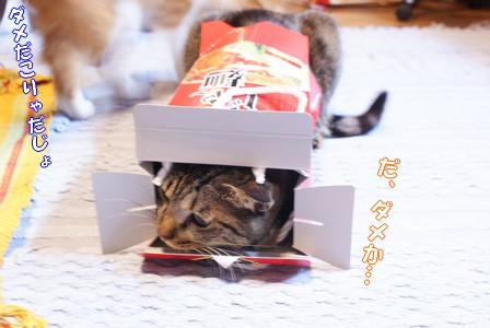 蘭 じゃ~じゃ~麺マンダメか