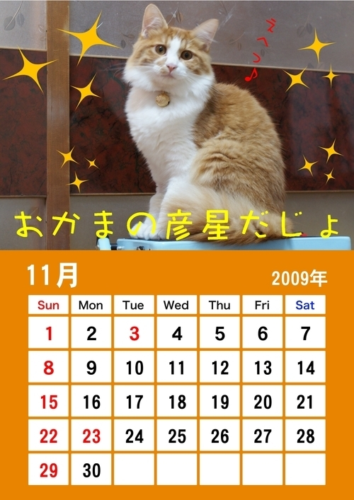 彦 カレンダー 11月小