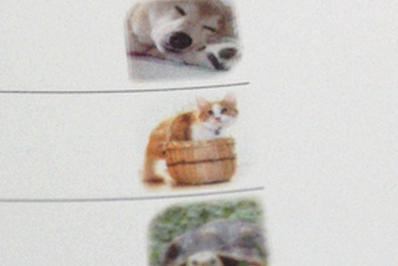 彦 ゼノアックカレンダー2