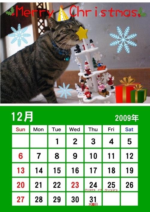 12月蘭カレンダー