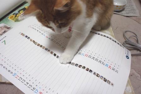 彦 ゼノアックカレンダー