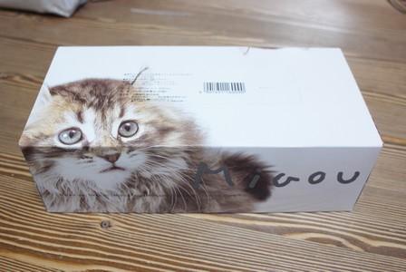 猫ティッシュ