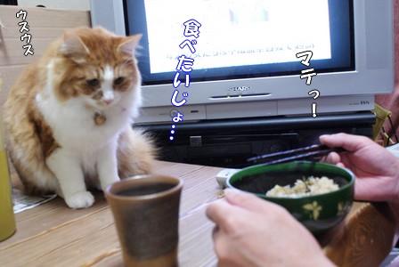 彦 食べたいじょ